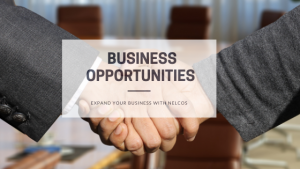 Business Opportunities - Expand Your Business With Bodaq Architectural Film from Nelcos
