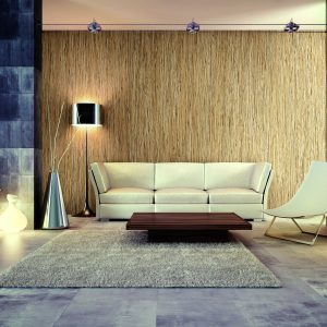 Wall Paneling refinishing with DW702 Design Wood Bodaq interior film